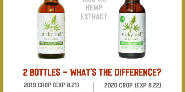 2 Bottles – What's the Difference?